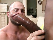 World Hot Gay Sex And Young Boy With Big Penis And Free Anim