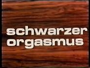 139703 Patricia Rhomberg - Schwarzer Orgasmus - 1970S Classic Xx