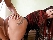 Big Round Tits Shemale In Stockings Gets Banged In Her Ass