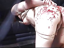 Japanese Sweet Bondage,  Very Hot !