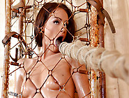 Sophie Lynx Trapped And Played With