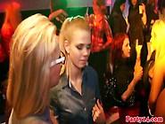 Porno Live Al Party,  Le Troie Ballano E Fottono...