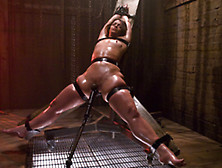 Brutal Hogtied Bdsm In The Dungeon