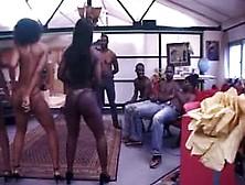 Les queutards africains se farcisse une petite brune - 2 part 9