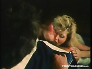 Ginger Lynn Gives A Great Pov Blowjob For The Cum