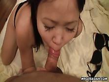Sweet Asian Amateur Sucks His Hard Dick In Pov