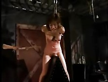 Porno Japanese Pony Torture And Whipping (Fouet)