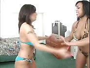Lola Lynn And Cynthia Blaze In Tit Punching - 4 Min