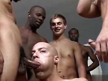 Hardcore Gay Porn Show Movie Of Boys Wanking Michael Madison