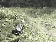 Japanese Nostalgic Porn #27