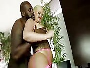 Blonde With A Big Ass Gets Black Cock