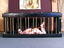 Caged Slave Punished By Strict Domina
