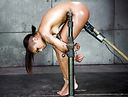 Randy Ebony Babe Skin Diamond Bound And Punished