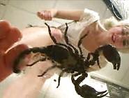 Lauren(Usa)- Barefoot Scorpion