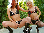 Sweet Gabriela And Nora Go Hardcore With A Horny Fellow
