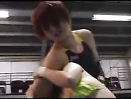 Wrestling Destruction - Bullying