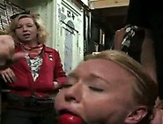 Ami Licking Balls,  Wanking Large Rods And Moaning