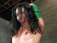 Wenona's Shaved Vagina Penetrated By Kinky Sex Toys