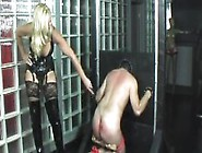 Pillory Punishment