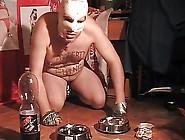 Slave Of Mistress Celine