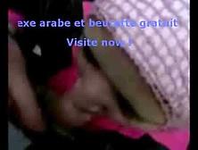 Arab Girl In Hijab Blowjob. Flv