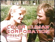 Color Climax - Teenage Bestsellers 251Part1