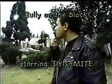 Bully On The Block With Dynamite