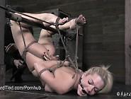 Bailey Blue Bound Tight,  Denied Orgasm
