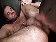 Delectable Hairy Dude Getting His Asshole Licked