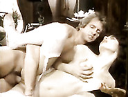 Vintage Porn Star Candy Shields Gets Screwed Bad From Behind