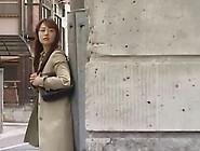 Japanese Nostalgic Porn #13