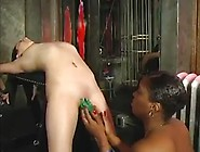 Black Bbw Training Skinny White Slave Girl