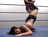 Wwe Paige Wrestling