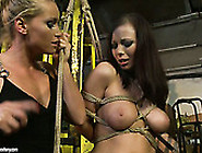 Brown-Haired Wench With Fine Boobs Needs A Good Punishment