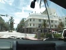 Esperanza Gomez - Backseat Drivers