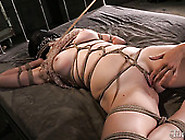 Shibari Chick Ashley Gets Her Pussy Finger Fucked By Horny Mistr