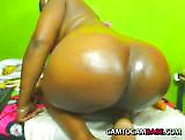 Huge Butt Bbw Ebony Live Webcam Adult