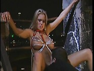 Anal Sex At Night And On The Roof With Briana Banks