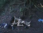 Sola Aoi In Shin Yã´jo Densetsu: Seirãªn (2004)