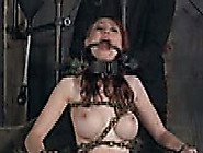 Slutty Fake-Boobed Chick Gets Her Holes Toyed In Bdsm Scene