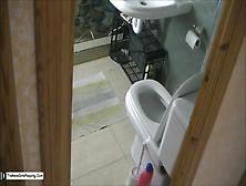 Voyeur Toilet Dump