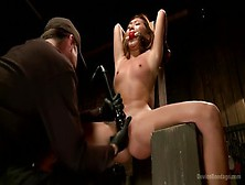 Dazzling Alina Li Acting In Amazing Bdsm Porn