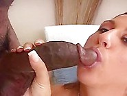 Awesome Interracial Gonzo Xxx Vid.  Enjoy