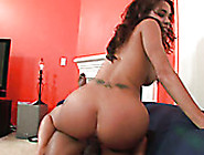 Amazing Slutty Dark Haired Babe Sucks The Dick Perfectly