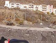 Abstrafung Der Sau Auf Der Kanareninsel La Palma