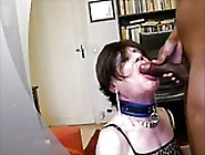 Lara Sucking Bbc And Eating Cum