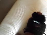 Huge Ebony Ass,  Spanked Hard,  Teased,  Fucked In Pov Doggystyle U
