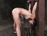 Cute And Lean Bondage Newbie Is Also Boned And Clamped