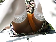 White Stockings In Park