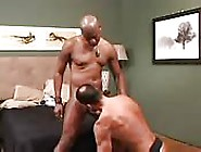 Two Hot Daddies In An Interracial Scene